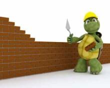 comment construire un enclos pour tortue de terre